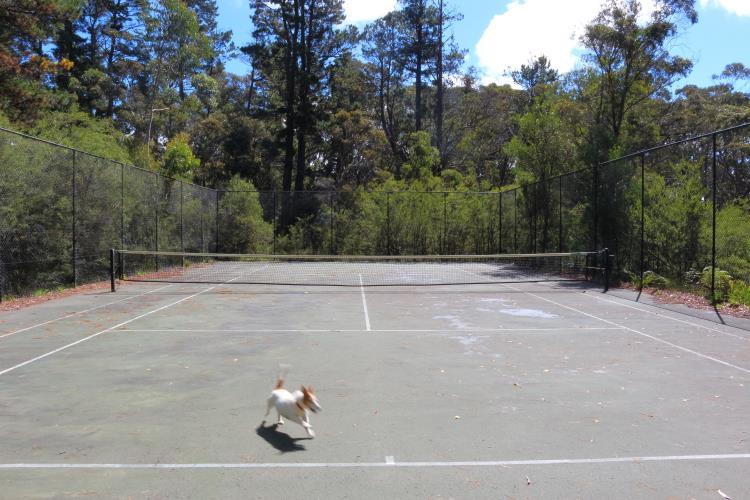 The Tennis Court at Medlow Bath Park